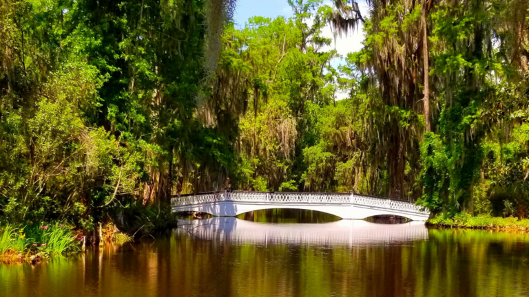 Finding Beautiful Places for Smiling Faces - Find My Porch Real Estate - View of bridge in West Ashley, SC - Robin Windham - Find My Porch Real Estate